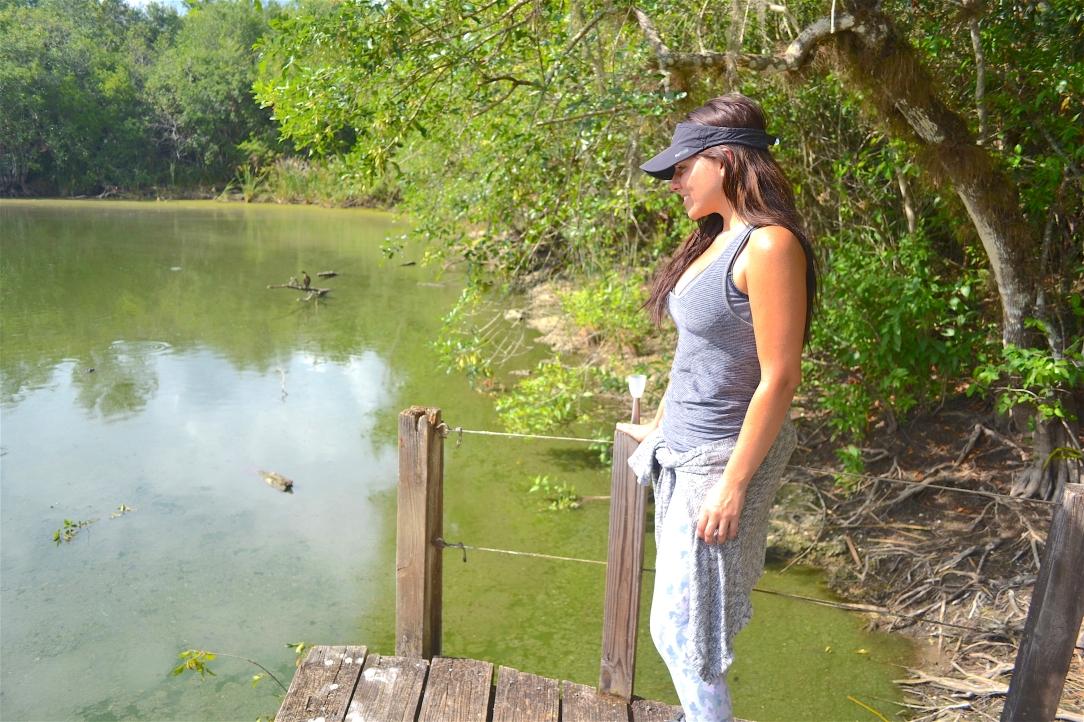 Everglades-Florida-trail.JPG